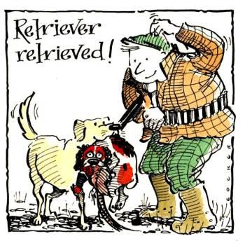 Retriever Retrieved