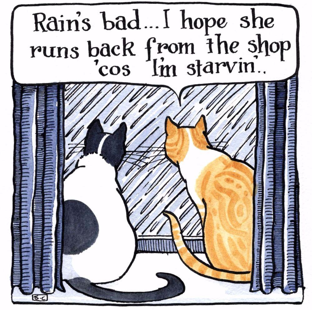 Rain's Bad
