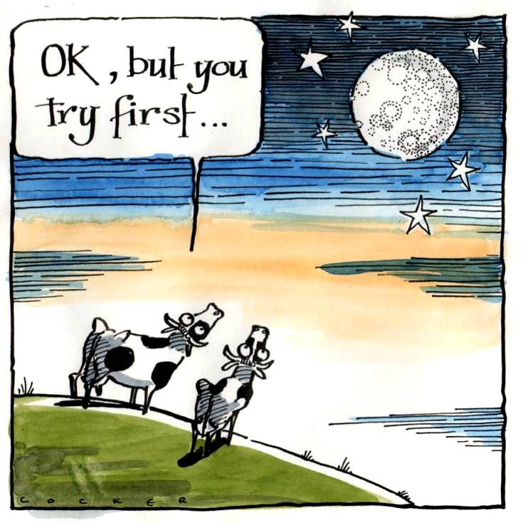 Greeting card with cartoon cows staring at the moon. Caption OK You Try Fir