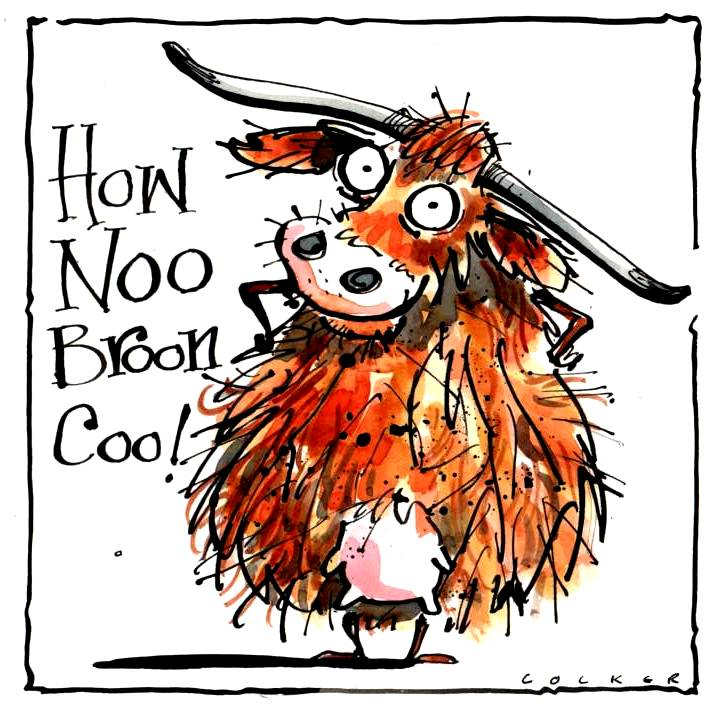 Greeting Card with cartoon Highland cow with caption How Noo Broon Coo