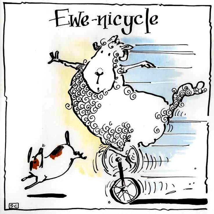 Ewe-nicycle