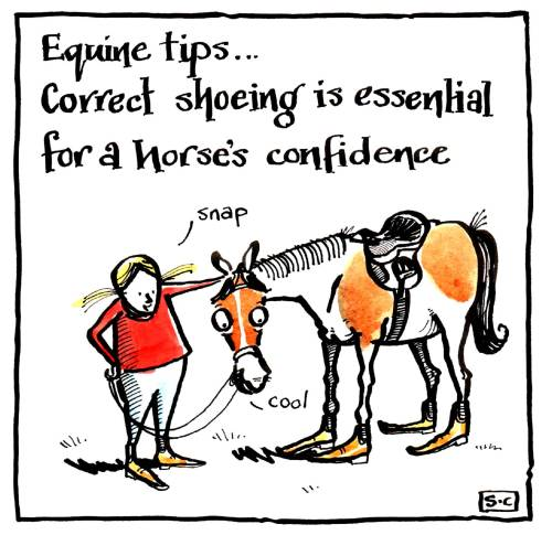 Equine Tips