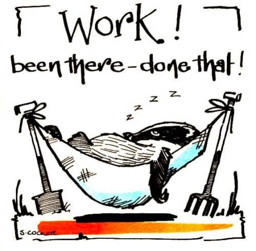 Retirement: Work!