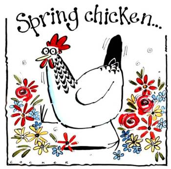Hen Greetings - Spring Chicken