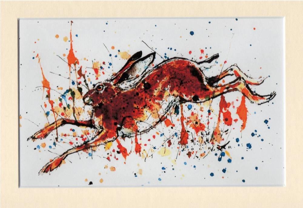 Splatter Hare
