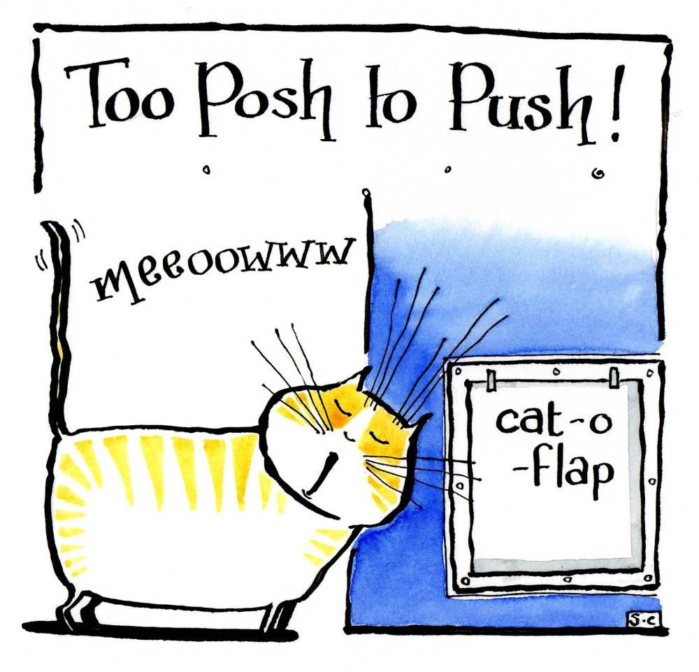 Too Posh To Push