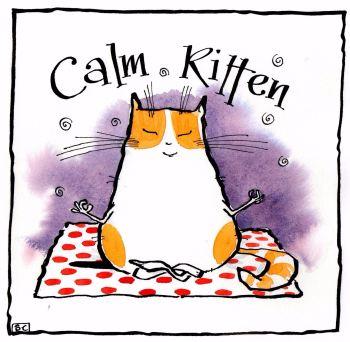 Calm Kitten
