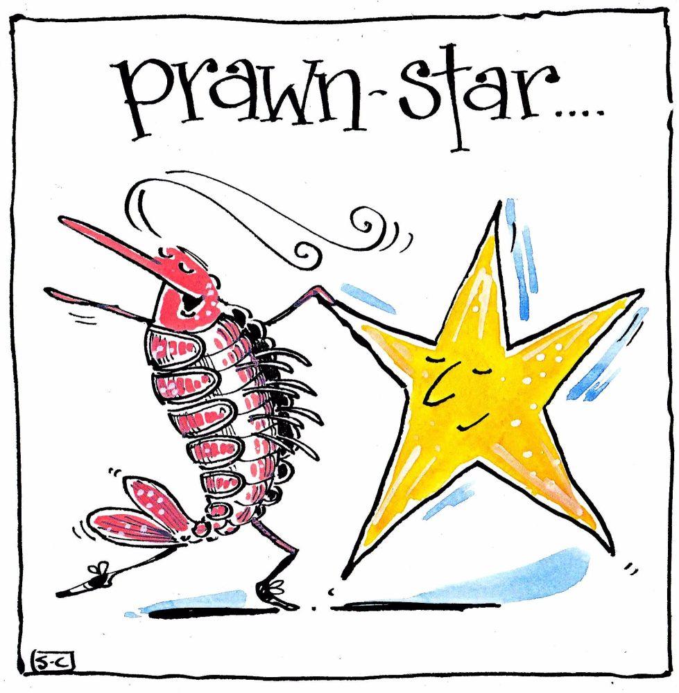 Funny card  cartoon prawn & star with caption:Prawn Star