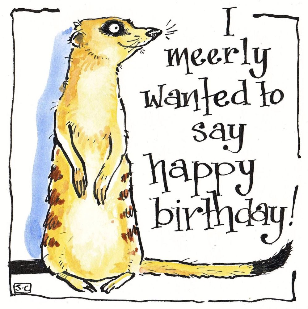 Birthday card shows meerkat with caption Meerly wanted to say Happy Birthd