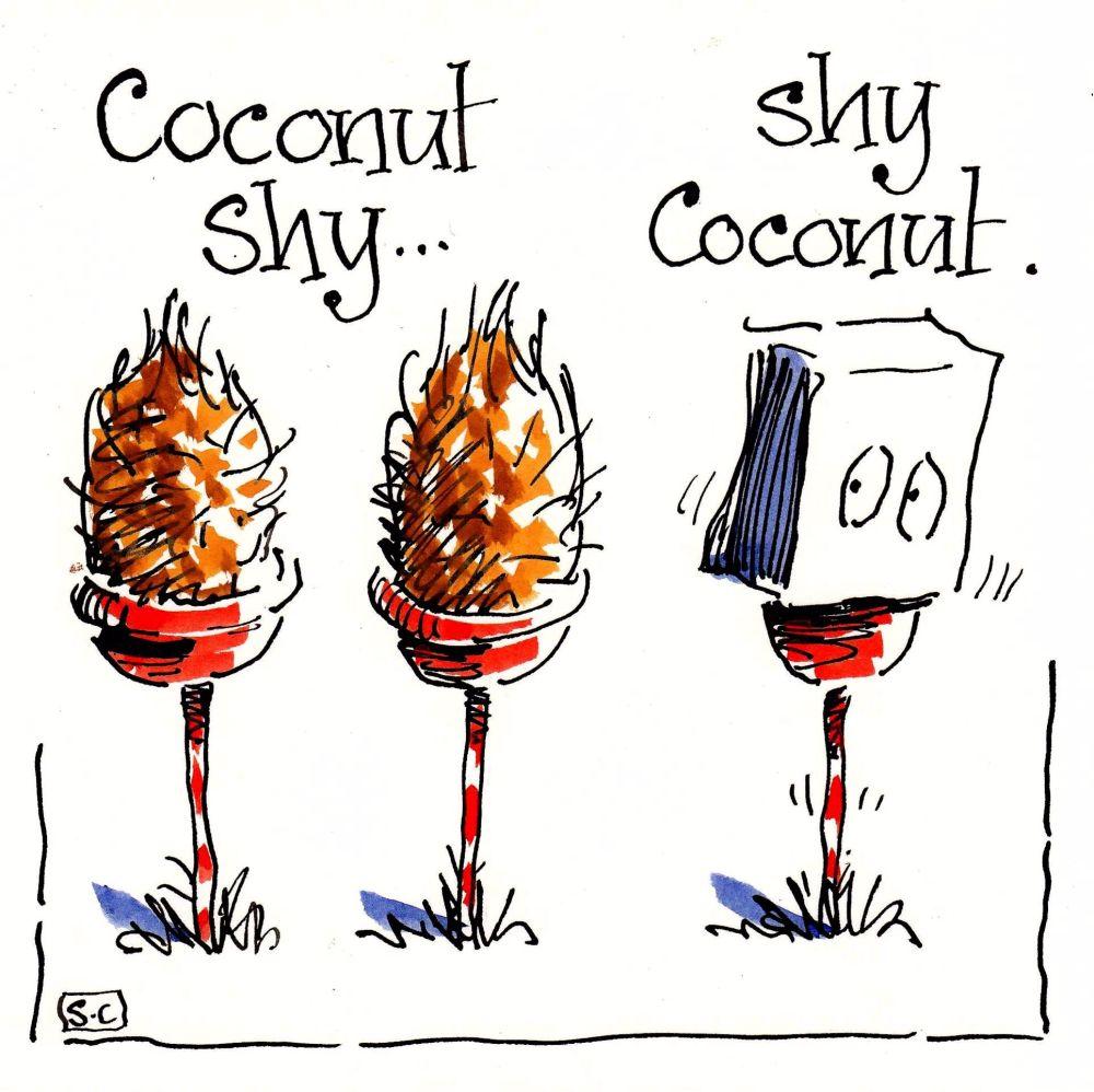 AAA Coconut Shy