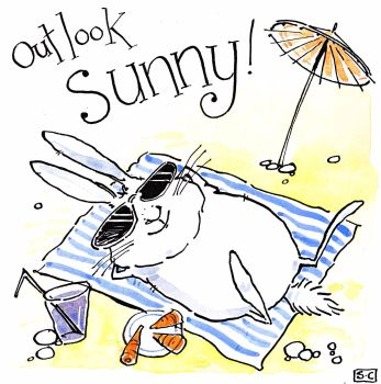 Rabbit Outlook Sunny