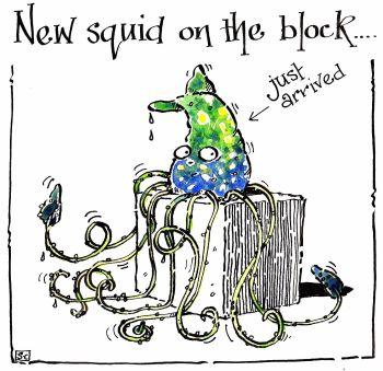 New Squid