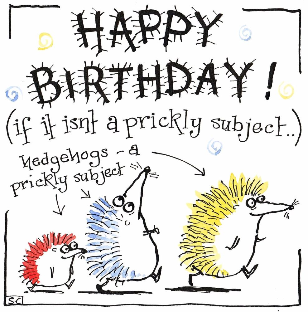 Birthday card with hedgehogs caption Happy Birthday if it isn't a prickly s