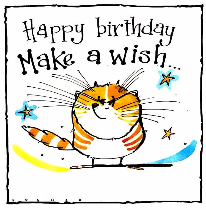 Birthday card with ginger cat with caption Happy Birthday Make A Wish