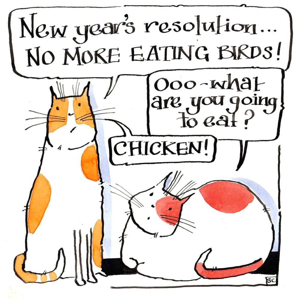 Christmas cat card. With 2 cartoon cats discussing New Years Resolutions  N