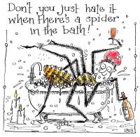 A Spider in the Bath