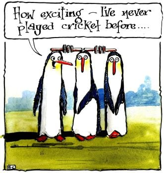 Penguins Love Cricket