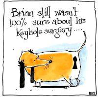 Brian's Surgery