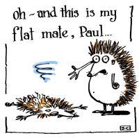Hedgehog Flat Mate