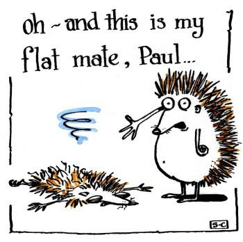 Hedgehog Flat Mate