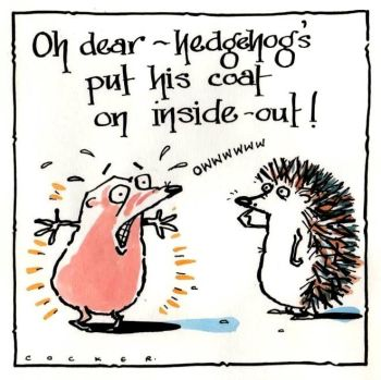 Hedgehog Inside Out
