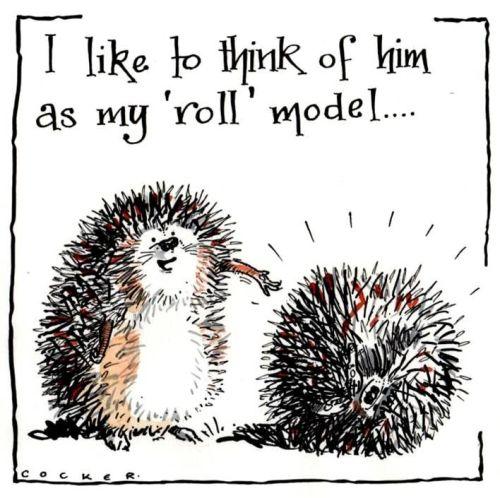Hedgehog Roll Model