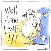 Well Done Ewe