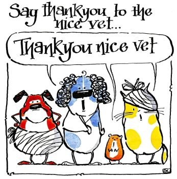Thanks To The Nice Vet