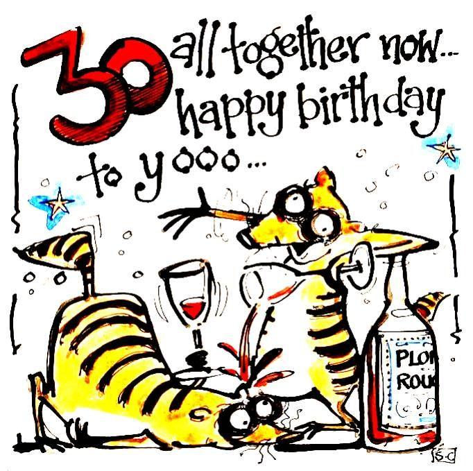 30 Meercat