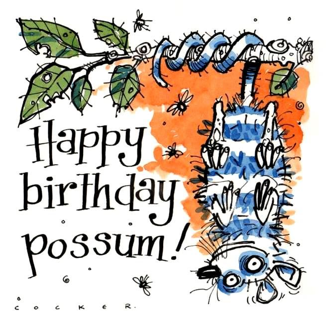 Birthday card with Possum upside down in tree. Caption is Happy Birthday Po