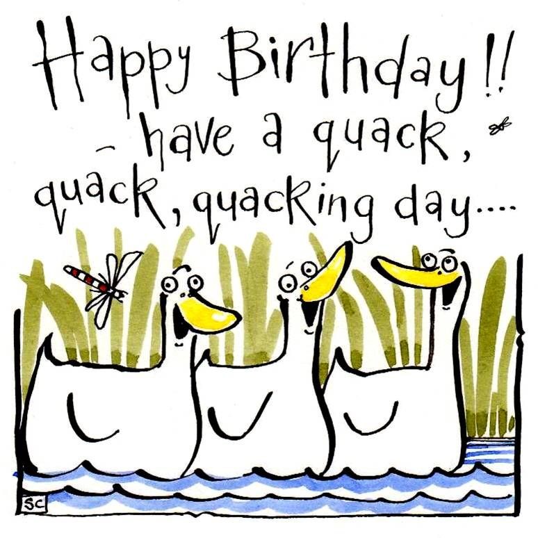 Birthday card with 3 cartoon ducks with caption Happy Birthday Have A Quack