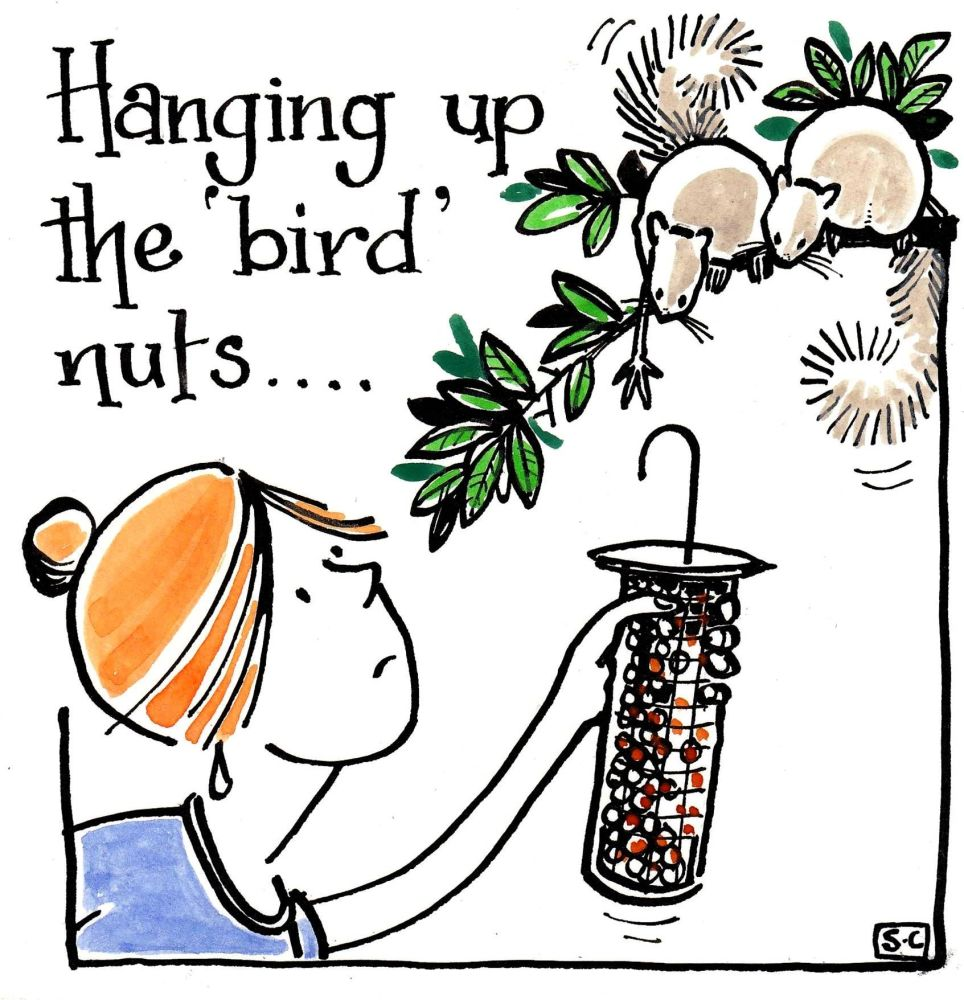 Hanging Up The 'Bird Nuts'