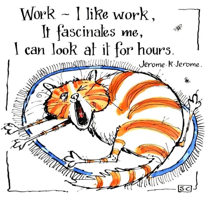 Work Fascinates Me ...