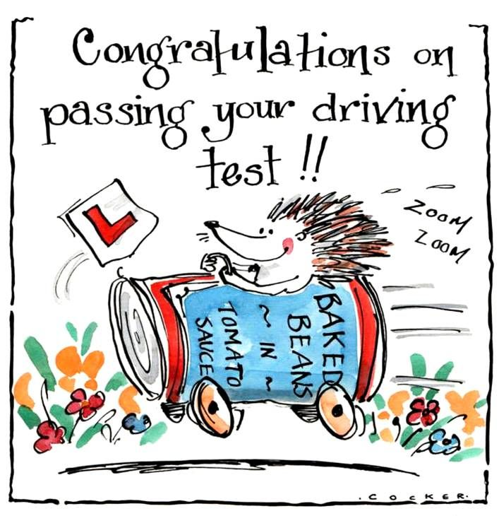 Congratulations on passing your driving test card with cartoon hedgehog in