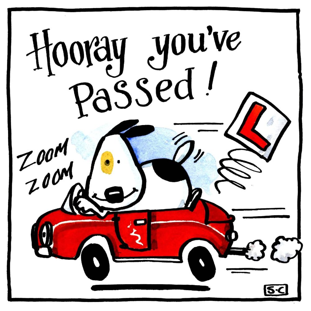 Driving Test Card cartoon dog in car with caption Hooray You've Passed.