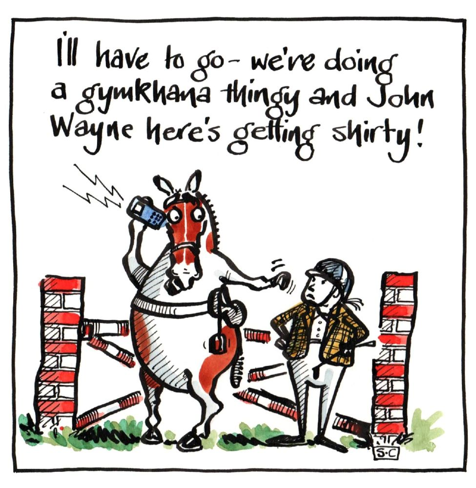 Greeting Card Showjumping horse & rider with caption from horse comparing r