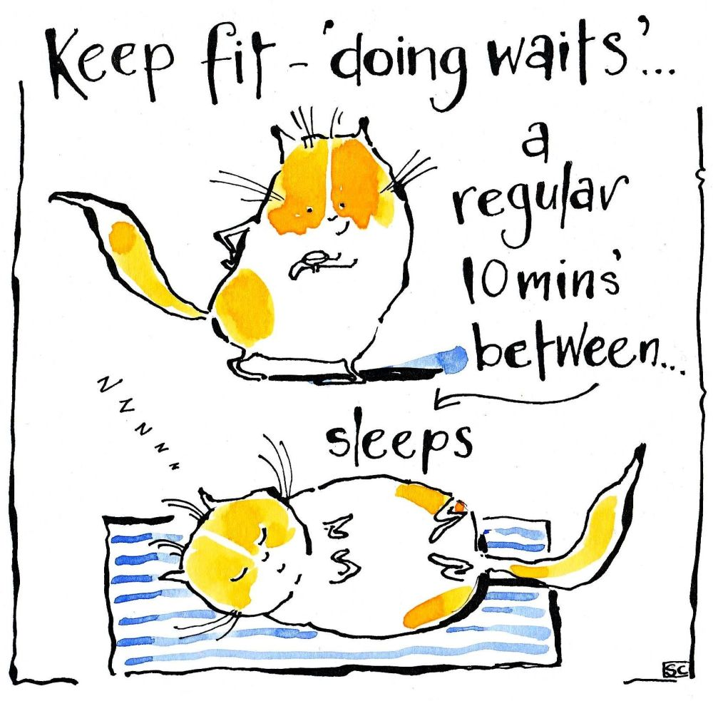 Birthday card with 2 cartoon cats one lying down. Caption Keep Fit 'doing w