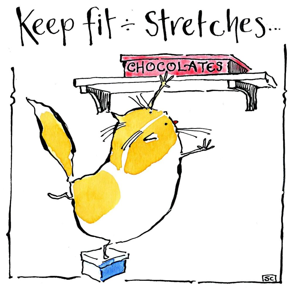 Greeting card with cartoon cat and chocolate box.Caption reads Keep fit - S