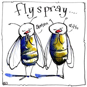 Fly S Pray