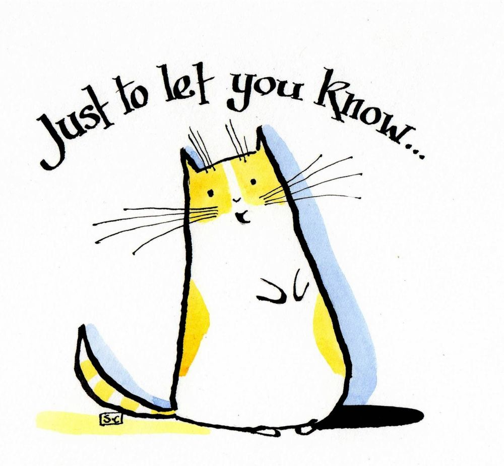 General purpose greeting card with cartoon cat . 'Just To Let You Know'