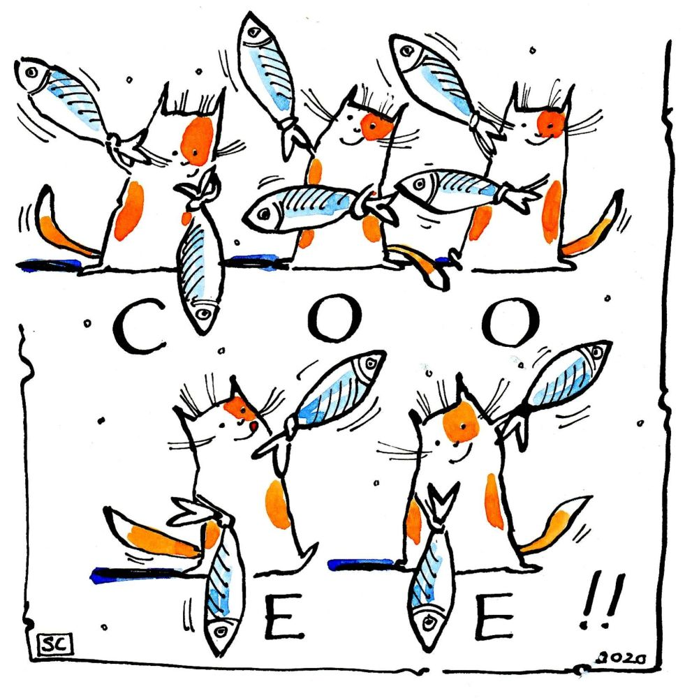 Funny cat card showing 5 cats performing semaphore with fish. Caption:Coo E