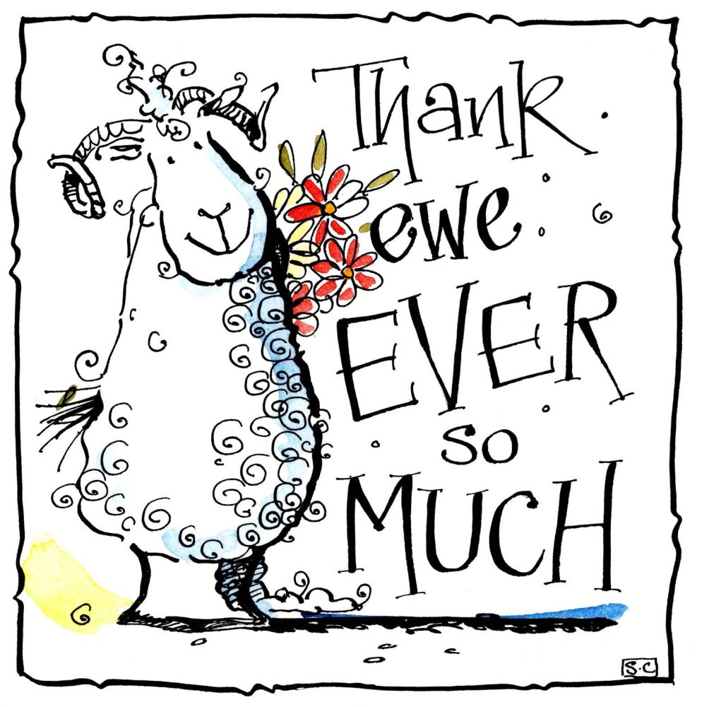 Thank you card with cartoon sheep. Caption: Thank ewe ever so much