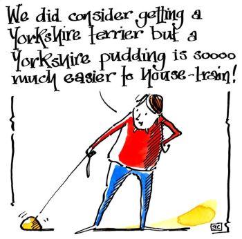 Yorkshire Pudding v Yorkshire Terrier