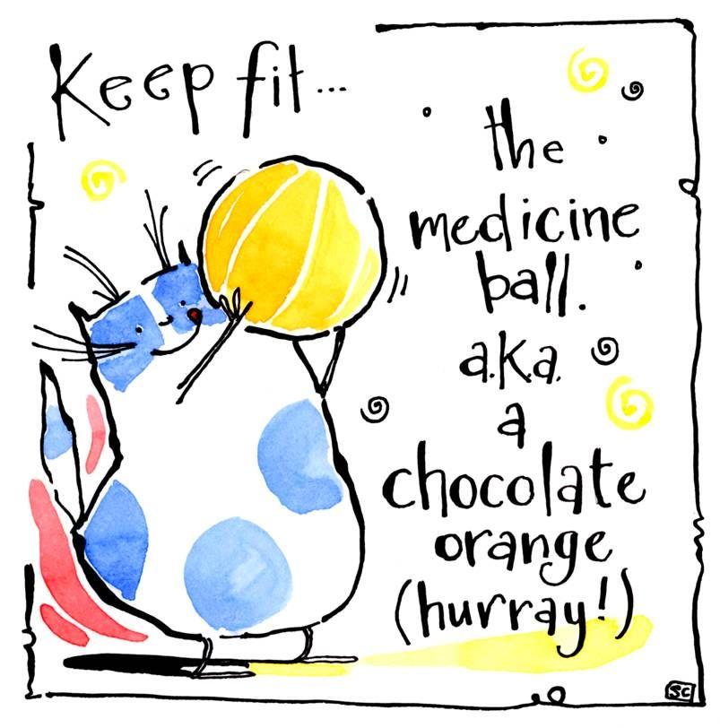 Greeting card with cartoon cat with Chocolate Orange. Caption: the medicine