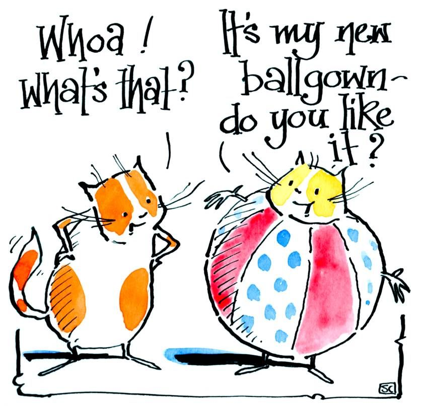 Funny cat card with two cartoon cats. One wearing a ball with caption What'