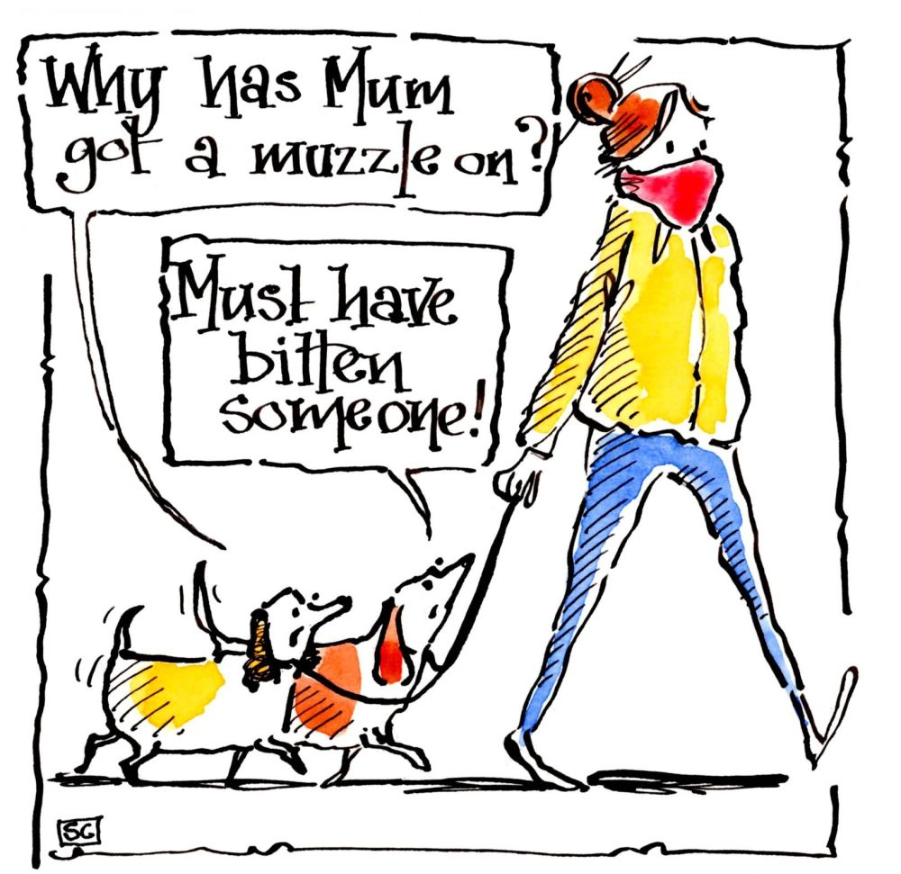 Quirky Dog Card. Dog walker wearing face  mask & dogs are confused. Why Has