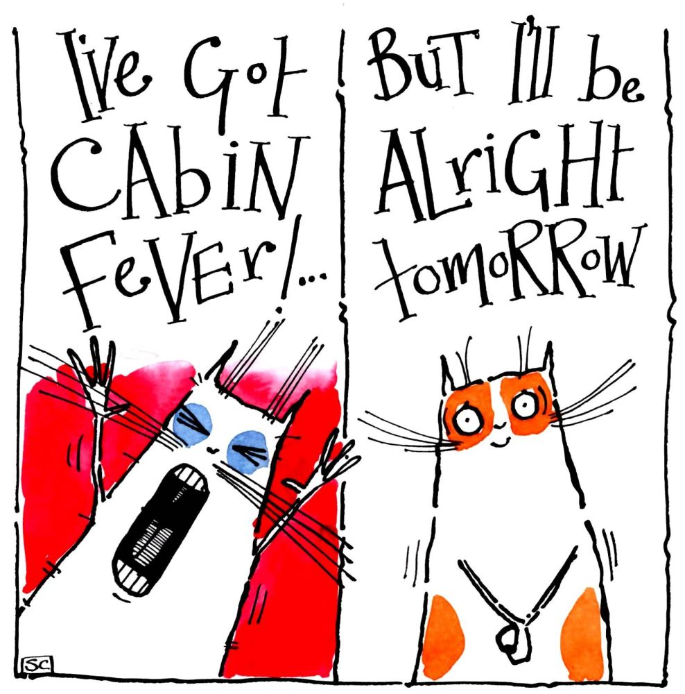 Funny card with two cats one yelling I've got Cabin Fever and