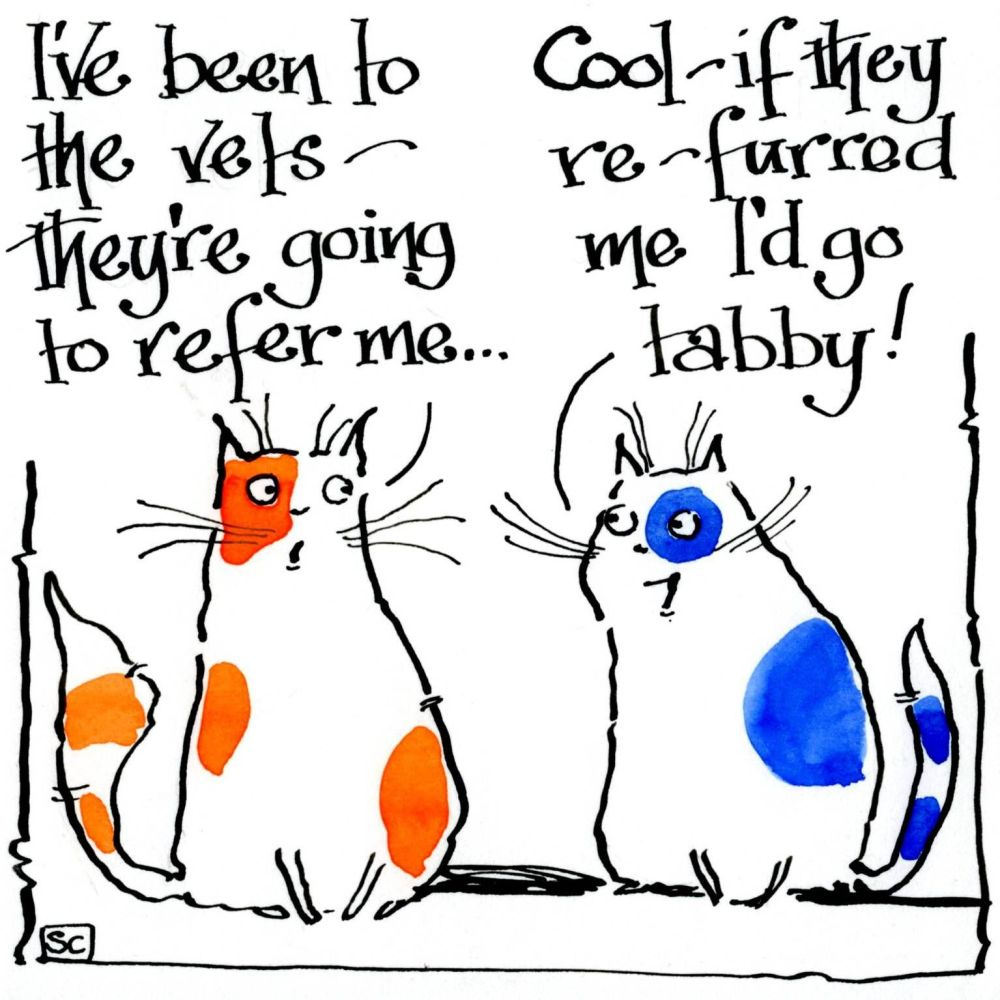 Funny cat card two cats discussing being referred and refurred