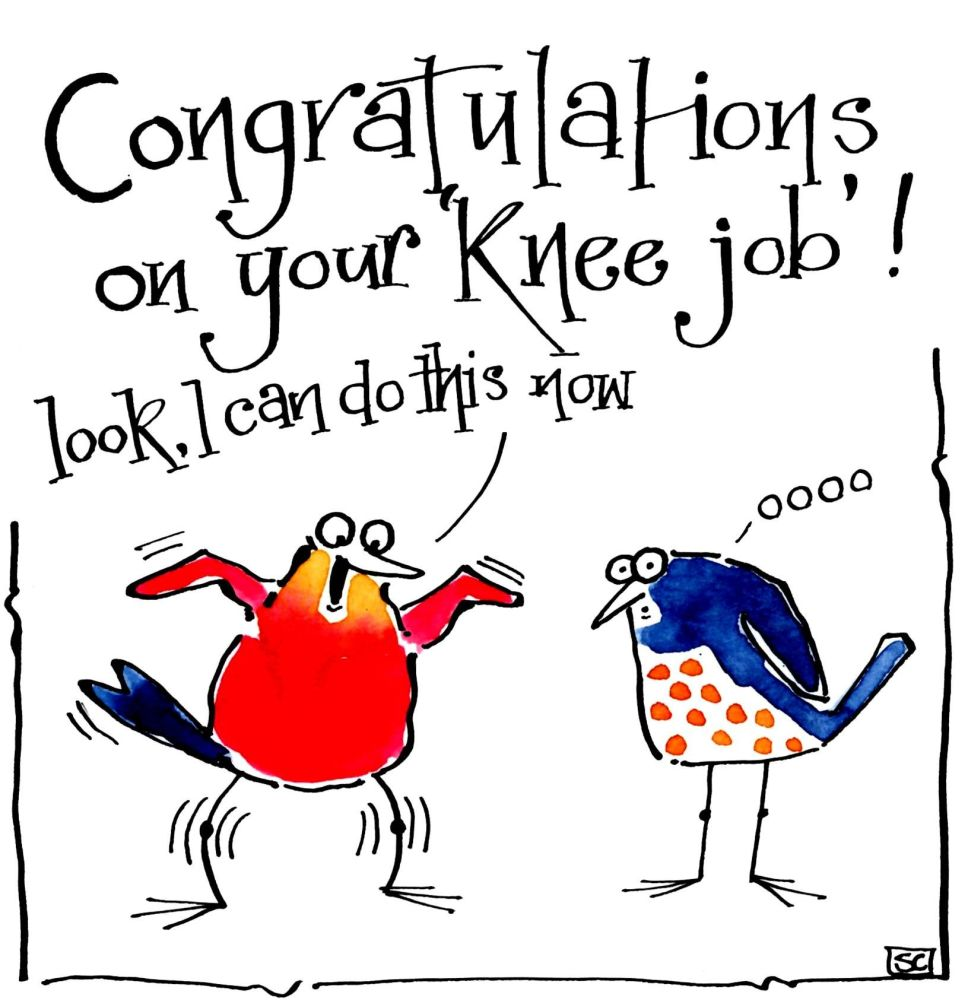 Funny get well card for knee operations or replacements 2 cartoon birds wit
