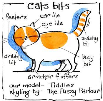 Cat's Bits